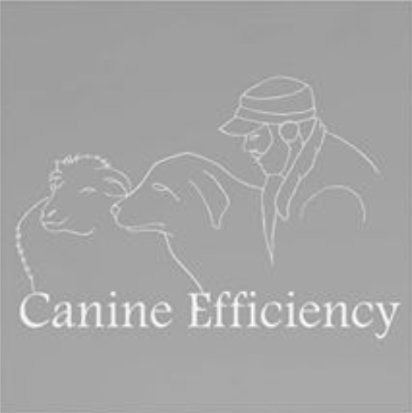 logo Canine Efficiency