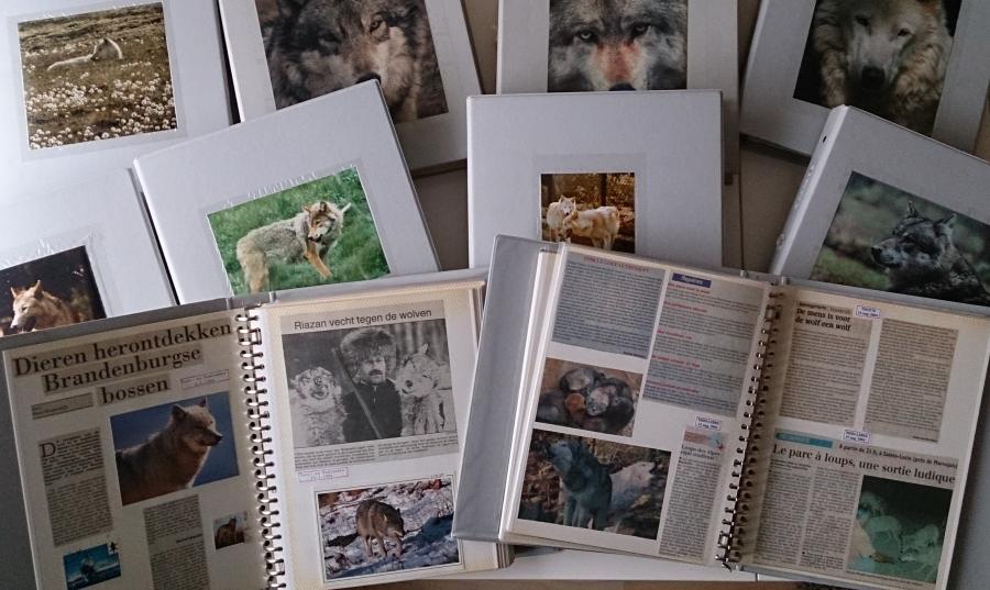 Verzameling Frans Stevens