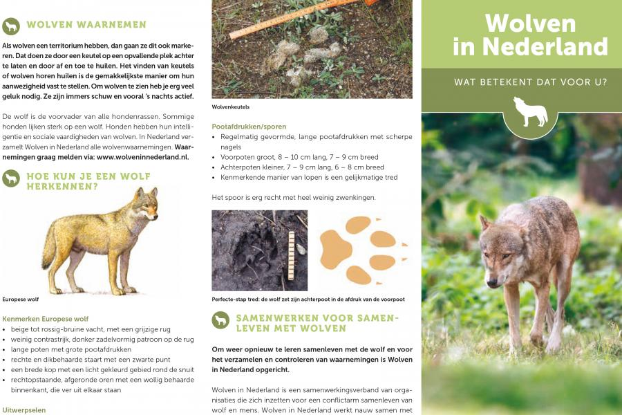Folder Wolven in Nederland